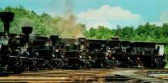 Parní lokomotivy 300.619 + 310.006 + 310.037 + 310.072 + 310.093 + 310.102 + 310.0134 v muzejním depu Lužná u Rakovníka dne 6.7.2002. Foto Luděk Čada (19)
