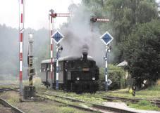 Zvláštní vlak s parní lokomotivou 310.0134 přijíždí do stanice Martinice v Krkonoších dne 15.7.2005. Foto Martin Navrátil (28)