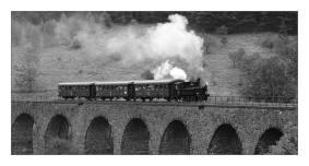 Parní lokomotiva 310.0134 na viaduktu u zastávky Novina trati Liberec - Česká Lípa dne 29.7.2007. Foto Martin Šritr (31)