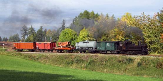 Zvláštní nákladní vlak tažený parní lokomotivou 310.0134 u Ploužnice dne 6.10.2012. Foto Miloslav Nečas (49)